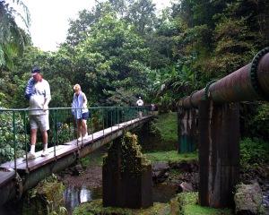 Bridge Ti TuGorge Dominica