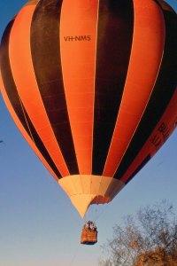 balloon toddy