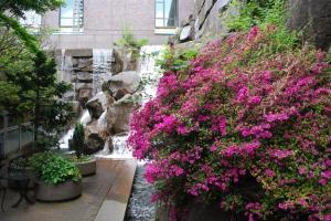 photo of waterfall gardens