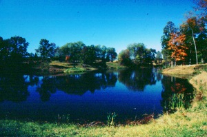 photo of pond